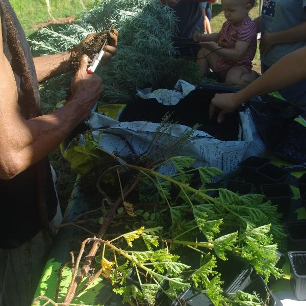 Retour en images sur l atelier jardin mandala arec for Jardin mandala