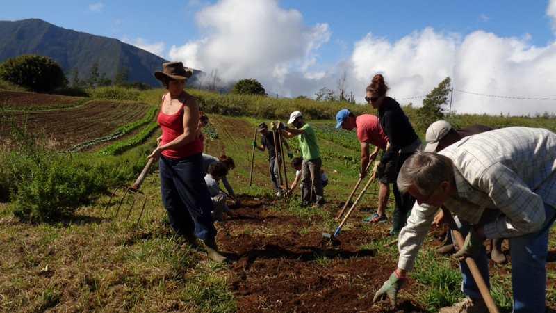 Journée d'initiation à l'Agriculture biologique dimanche 9 août