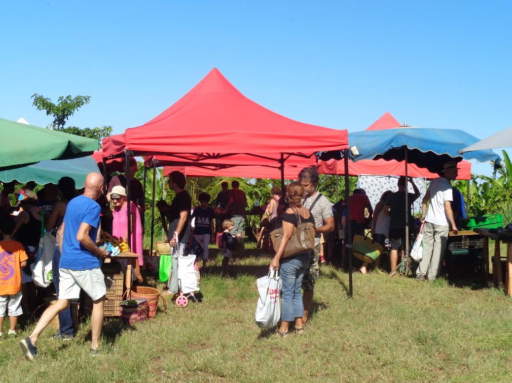 Du champ au marché