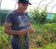 Agriculteur militant